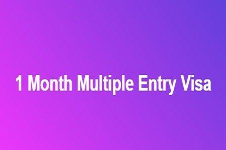 1 Month Multiple Entry Visa